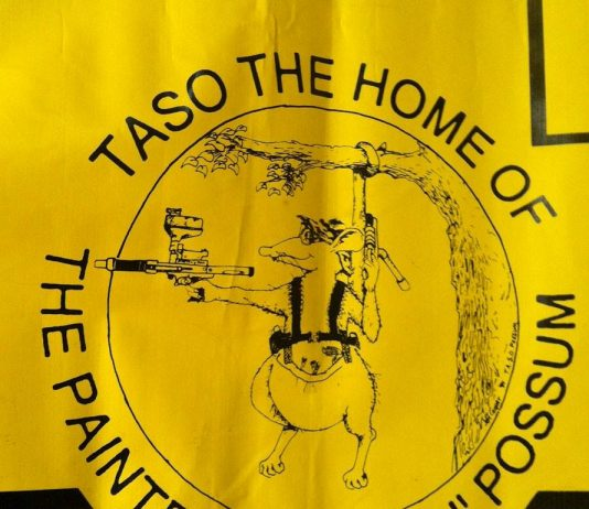 Close up of the Paintball Packing Possum on the Taso Banner.