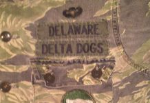 Delaware delta dogs uniform patches